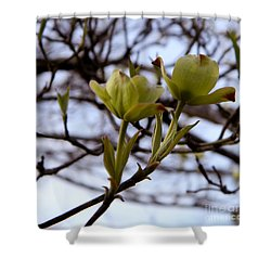 Two Of  A Kind Shower Curtain by Andrea Anderegg