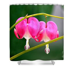 Two Of Hearts Shower Curtain by Patti Whitten