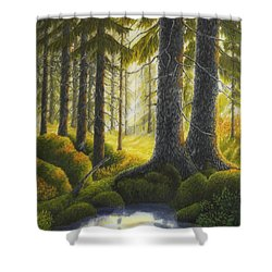 Two Old Spruce Shower Curtain by Veikko Suikkanen