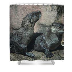 Two Otters Shower Curtain
