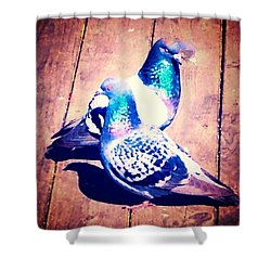 Two Pigeons And A Ghost Shower Curtain