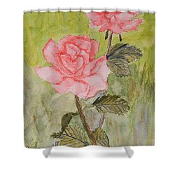 Two Pink Roses Shower Curtain