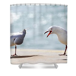 Two Seagulls Shower Curtain