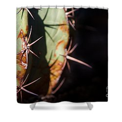 Two Shades Of Cactus Shower Curtain