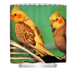 Two Tiels Chillin Shower Curtain
