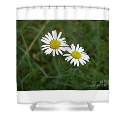 Two To The Sun Shower Curtain