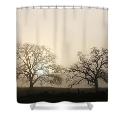 Two Trees In Fog Shower Curtain
