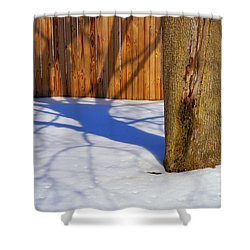 Two Trees In One Shower Curtain by Paul W Faust -  Impressions of Light