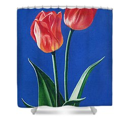 Shower Curtain featuring the painting Two Tulips by Janice Dunbar