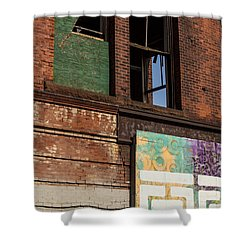 Two Types Of Art Shower Curtain by Karol Livote