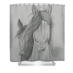 Two Wild Horses Shower Curtain