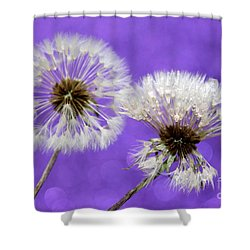 Two Wishes Shower Curtain by Krissy Katsimbras