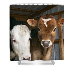 Shower Curtain featuring the photograph Two's Company by Sara  Raber