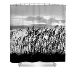 Tybee Lighthouse One Shower Curtain
