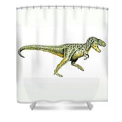 Tyrannosaurus Rex Shower Curtain by Michael Vigliotti