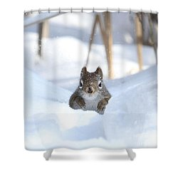 Is Winter Over Yet Shower Curtain by Heather King