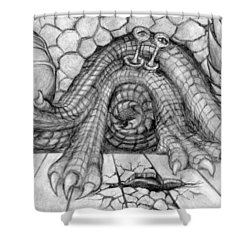 Ulcer Shower Curtain