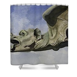 Ulmer Munster Gargoyle Shower Curtain