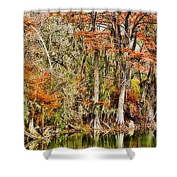 Ultimate Cypress Panoramic Shower Curtain