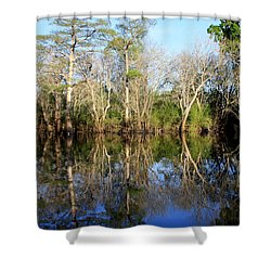 Ultimate Reflection Shower Curtain