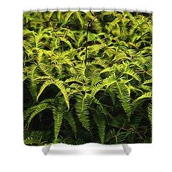 Uluhe Fern II Shower Curtain