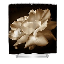 Umber Rose Floral Petals Shower Curtain