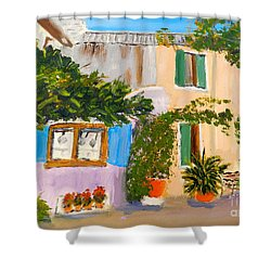 Shower Curtain featuring the painting Umbera Courtyard by Pamela  Meredith