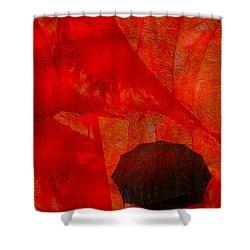 Umbrella Shower Curtain by Jack Zulli
