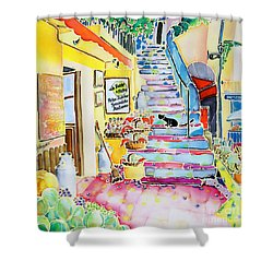 Un Coin De St-tropez Shower Curtain