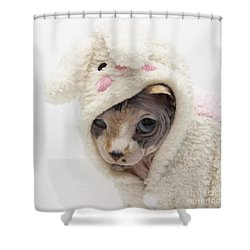 Unamused Shower Curtain
