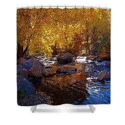 Under A Gold Canopy Shower Curtain by Jim Garrison