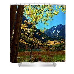 Under Golden Trees Shower Curtain by Jeremy Rhoades