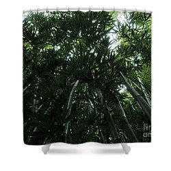 Under The Bamboo Haleakala National Park  Shower Curtain by Vivian Christopher