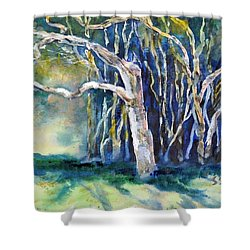 Under The Banyan Tree Shower Curtain by Sally Simon