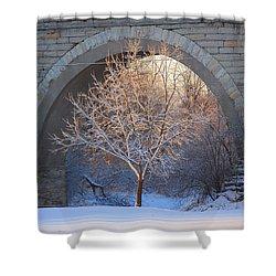 Shower Curtain featuring the photograph Under The Bridge by Viviana  Nadowski