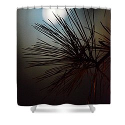 Under The Moon II Shower Curtain by Maria Urso