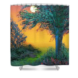 Under The Solstice Moon Shower Curtain by Alys Caviness-Gober
