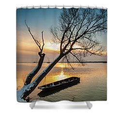 Under The Tree Shower Curtain by Davorin Mance