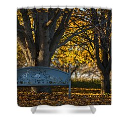 Under The Tree Shower Curtain by Sebastian Musial