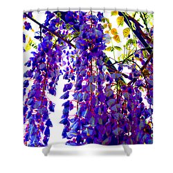 Under The Wisteria Shower Curtain by Alys Caviness-Gober