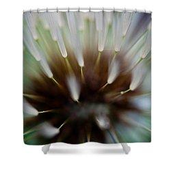 Undersea Dream Shower Curtain by Shane Holsclaw