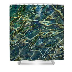 Underwater Roots Shower Curtain
