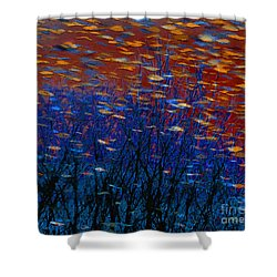 Underwater Surreal Seascape Shower Curtain by Dee Flouton