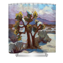 Unexpected Snowfall At Joshua Tree Shower Curtain by Diane McClary