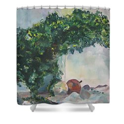 Unfinished Apples Shower Curtain by Diane Pape