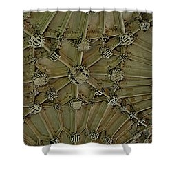 Unfinished Business Shower Curtain by Joseph Yarbrough