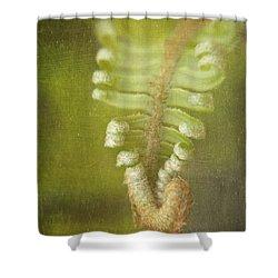 Unfurling Fern Shower Curtain