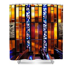 United States Air Force Academy Cadet Chapel Detail Shower Curtain by Vivian Christopher