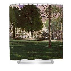 University Of South Carolina Horseshoe 1984 Shower Curtain by Blue Sky