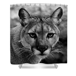 Untamed Shower Curtain